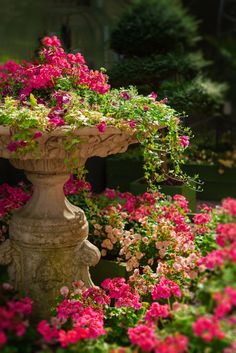 """tangledwing: """"Garden with fountain. """""""