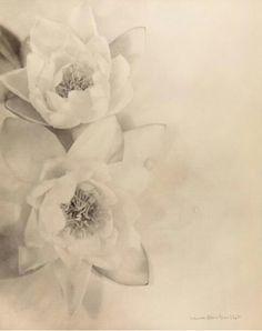 'Fleurs' Laure Albin Guillot ca. Pencil Drawings Of Flowers, Art Drawings, Laura Lee, Muse Art, Flowers Nature, Flower Pictures, Art Tutorials, Photo Art, Photos