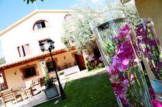 Wedding Elisenda&Nico Detalle de phalaenopsis en jarrón El Taller de Joan