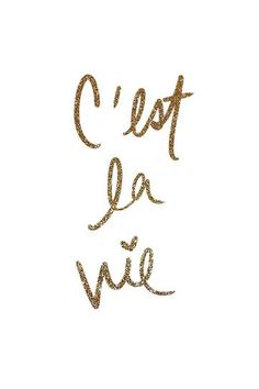 C'est La Vie and maybe something's wrong with me but at least I am free~ RUDIMENTAL FREE