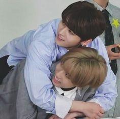 All Stray Kids Ships - Minsung~ Minho (Lee Know) x Jisung (Han) - Page 2 - Wattpad Kpop, Header Tumblr, Stray Kids Minho, Kid Memes, Cartoon Memes, Kids Board, Wattpad, Lee Know, Meme Faces