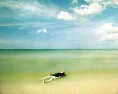 El ahogado más hermoso del mundo - Google Search