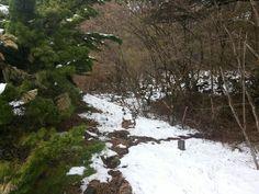 Snow on Fujiyama