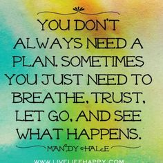 You don't always need a plan.  Sometimes you just need to breath. Trust, let Go and see what happens.  Mandy Hale
