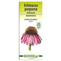 Biover - Teinture mère Bio Echinacea purpurea