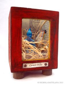 Captured Cornish Piskie in a Box - MISCELLANEOUS TOPICS