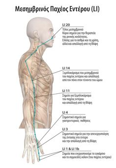 Mind Body Soul, Pain Relief, Anatomy, Therapy, Mindfulness, Health, Stretching, Fitness, Salud