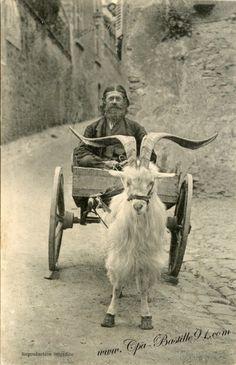 Dinan - Rue du thêatre ~ Un Homme sur une charrette tirée par une chèvre
