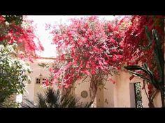The riad courtyard and fountain at Dar Khalifa#Repin By:Pinterest++ for iPad#