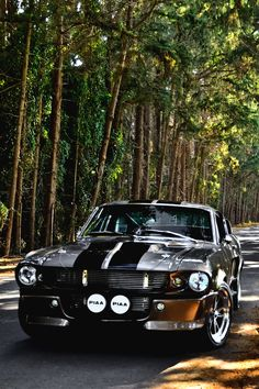 Love 'em or hate 'em Ford Mustang Shelby GT 500 is one heck of a car. Shelby Mustang Gt500, Mustang Cars, Ford Mustangs, 1967 Mustang, Ford Shelby, Dream Cars, American Muscle Cars, Gt 500, Sweet Cars