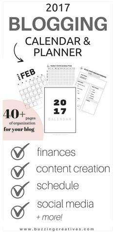 2017 blogging calendar & planner - plan your finances, brain storm your content creation, yearly, monthly and weekly calendars, social media tracker and planner!