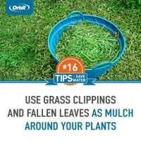 Use grass clippings as mulch around your plants and trees