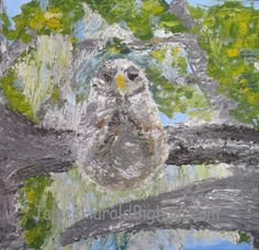 """""""Taking a Break"""" Owl sitting on a branch with spanish moss on the trees at Eden Gardens State Park, Santa Rosa Beach, FL.  Medium: Acrylic 8 x 10 on canvas panel using palette knife. Available"""