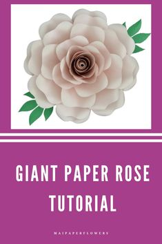 This digital large paper rose diy template and tutorial is awesome for your paper flower backdrop. Learn how to make this paper rose easy with Cricut, Silhouette and Printer at affordable cost!!! #paperrosediy #paperrosetemplate #rosetemplate #paperrosecricut #paperrosesvg #rosetemplatesvg #paperrosediytemplate #paperrosetutorial #largepaperrose #largepaperrosediy #howtomakepaperrose #paperroseeasy Flower Svg, Flower Template, Flower Crafts, My Flower, Easy Paper Flowers, Paper Flower Backdrop, Rose Tutorial, Paper Flower Tutorial, Giant Paper Flowers