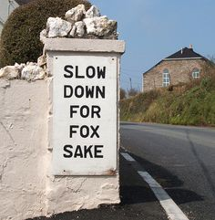 We need this sign on our road. We really have a little fox family in the neighborhood! :)