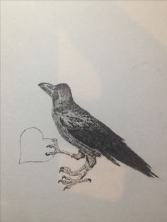 easy drawing: crow with heart