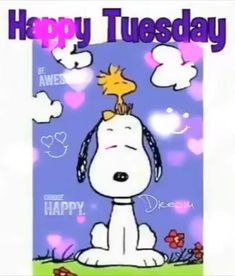 Good Morning Snoopy, Good Morning Friends, Morning Humor, Good Morning Quotes, Tuesday Quotes Funny, Tuesday Motivation Quotes, Happy Tuesday Morning, Good Morning Friday, Snoopy Love