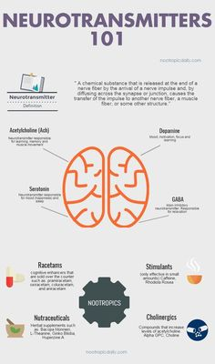 Nootropics and Neurotransmitters 101 an infographic. Get a better understanding of nootropics by learn how nootropics interact with neurotransmitters. - join our community for growth ! Brain Anatomy, Anatomy And Physiology, Medical Student, Brain Facts, Brain Science, Computer Science, Life Science, Science Education, Physical Education