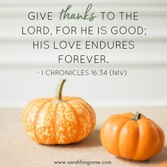 5 Bible Verses to Grow a Grateful Heart Prayers For Hope, Hope In God, Words Of Hope, Gratitude Quotes, Prayer Quotes, Scripture Quotes, Quotes Quotes, Christian Devotions, Christian Encouragement