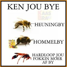Afrikaans Quotes, Funny Quotes About Life, Funny Pictures, Jokes, Lol, South Africa, School Projects, Paper Craft, Bouquets