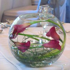 Submerged or wrapped in Fish Bowl