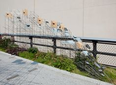 Oudolf ~ High Line, New York, NY.               _/\/\/\/\/\_  s  sarah sze birdhouse/sculpture