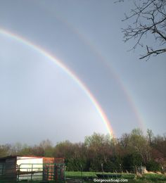 If you didn't see the double rainbow video from April 1st we posted here is the picture of this beautiful double rainbow.  #rainbow #rainbows #pic #doublerainbow #backyard #best #backyardfun #big #kentucky #beautiful #rare #awesome #pretty #awesomeness  #cool  #pictures #bestoftheday #pics #picture #picoftheday #pictureoftheday #photooftheday #photo #photos #photoaday #photogram #enjoy #enjoying