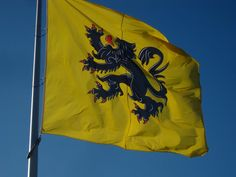 Flemish Lion on the Flag of the Flanders Province of Belgium.