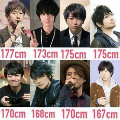 Seiyuu Height