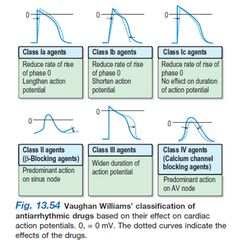 classification of antidysrhythmic drugs - Google Search
