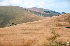 Słowacja. Wielka Fatra, szlak Kriżna-Ostredok-Ploska   Trekking, Country Roads, Hiking