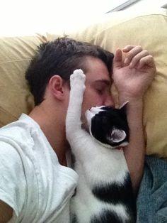 Cat nap...