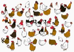 Hens by Fabrice Parme