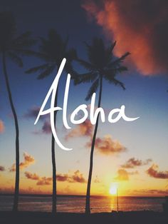 Picture of Aloha with Palm Trees Background 004 Leather Cover for iPhone 6 Oahu Hawaii, Hawaii Life, Hawaii Travel, Hawaii 2017, Hawaii Beach, Hawaii Vacation, Cruise Travel, Bali Travel, Ocean Beach