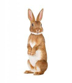 Maak van de kinderkamer een gezellige beestenboel met de muurstickers Forest Friends. Neem bijvoorbeeld dit konijn, het hert, het musje of de eekhoorn. Allerlei