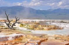 Yellowstone Nationalpark, Visit Yellowstone, Yellowstone Camping, Vacations In The Us, Best Family Vacations, Photography Backdrops, Travel Photography, Amazing Photography, Safari