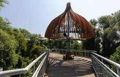 Sétálj a lombok között! Lombok, Ceiling Lights, Lighting, Hungary, Budapest, Home Decor, Travel Advice, Viajes, Decoration Home