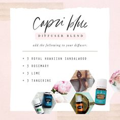 Heres the best part about oils. theyre so versatile and you can make SO many things with them! And who wouldnt want this blend in their diffuser? Click the link in bio to order your oils! Yl Oils, Doterra Oils, Young Living Oils, Young Living Essential Oils, Essential Oils Guide, Diffuser Recipes, Essential Oil Diffuser Blends, Diy, Capri Blue