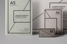 A series of essential stationery format to showcase your branding projects. It includes a A6 flyer, A5 folder, A4 horizontal paper...