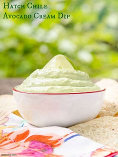 Hatch Chile Avocado Cream Dip will get your party started in a most tasty way. It's creamy avocado combined with hatch chile, sour cream, and lime juice.