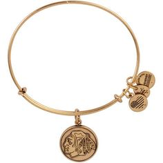 Check out this Women's #Blackhawks Alex and Ani Gold Primary Logo Bracelet now available online!