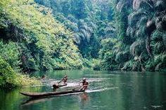 manovo gounda national park