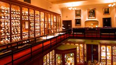 The Mütter Museum - With more than 25,000 real Medical Oddities and Artifacts in Philadelphia, PA (open daily 10 am - 5 pm).
