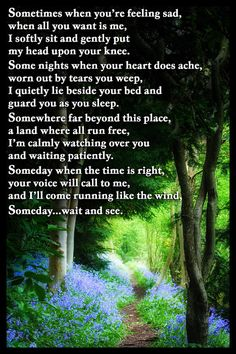 Pet Bereavement Flexible Fridge Magnet Gift with the beautiful verse Someday ©Jean Chaff These versatile thin flexible magnetic signs are suitable for