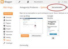 Blogger is leuk om mee te beginnen, maar veel bloggers verlangen naar meer mogelijkheden, een professionelere look en willen zelf de controle. Kortom, een succesvol blog wil je in eigen beheer.