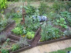 potager garden layout   Potager Designs - Elaine Christian - Garden Design - Northants
