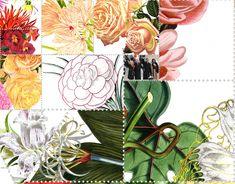 Detail from the  mosaic portrait of Dr. Jill Biden. #Politics #Collage #Nature #Flowers #Botanical #Democrats #Elections #Photomosaic Jill Biden, Mosaic Portrait, Photo Mosaic, American Women, Collage, Politics, Detail, Artwork, Nature