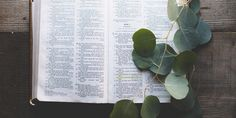 open bible with leaves on top photo – Free Book Image on Unsplash Kindness Scripture, Fear And Trembling, Doctor Images, Open Bible, Friendship Images, Shadow Of The Almighty, Books To Read For Women, Free Bible Study, Super Images