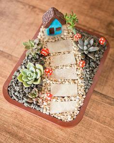 Indoor Gardening DIY How To Build - Vertical Gardening Jardines Verticales Caseros - - - Fairy Garden Pots, Dish Garden, Garden Terrarium, Succulent Gardening, Cacti And Succulents, Balcony Gardening, Kitchen Gardening, Indoor Gardening, Vegetable Gardening