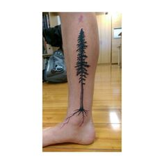 58 Coolest Tree Tattoos Designs And Ideas For Men And Women ❤ liked on Polyvore featuring men's fashion